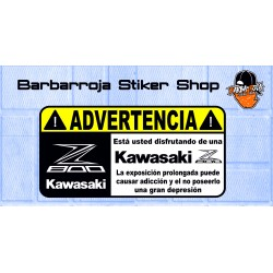 Pegatina advertencia kawasaki z 800 02