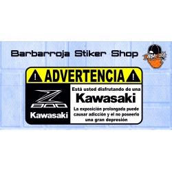 Pegatina advertencia kawasaki z 800