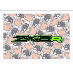 ZX-6R
