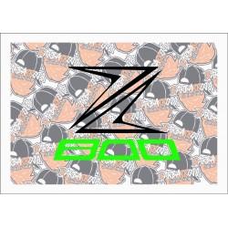 Z 800