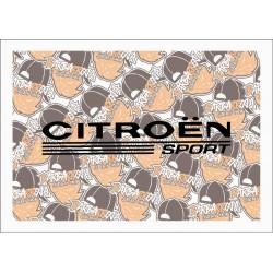 CITROEN SPORT 02