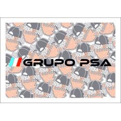 Grupo PSA 2